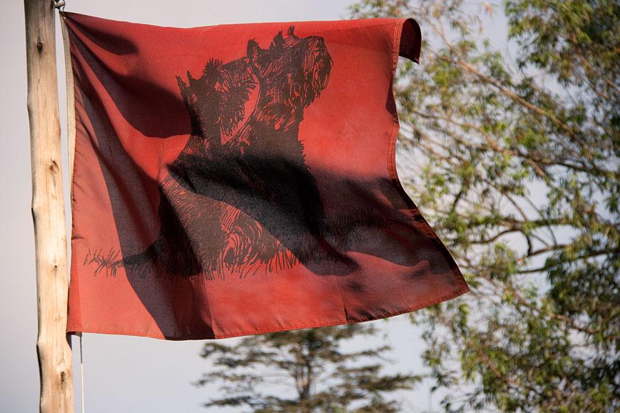 backworth-stud-flag.jpg