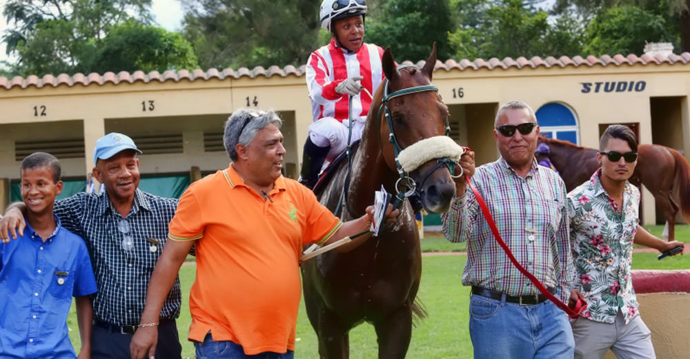 The Volsum Family leads in victorious Bermudabreeze with jockey Muzi Yeni up / Gold Circle (p)