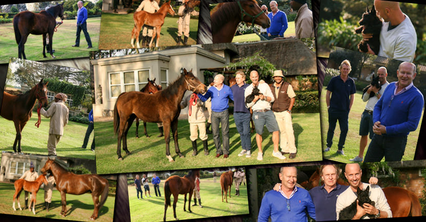 john freeman visit to backworth stud