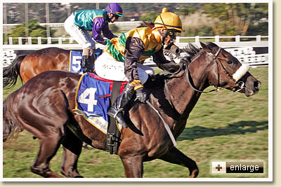 Umkomaas wins Backworth Stud MR 95 Handicap