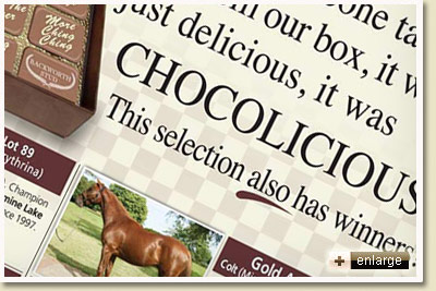 Emperors Palace National Yearling Sale Chocolicious
