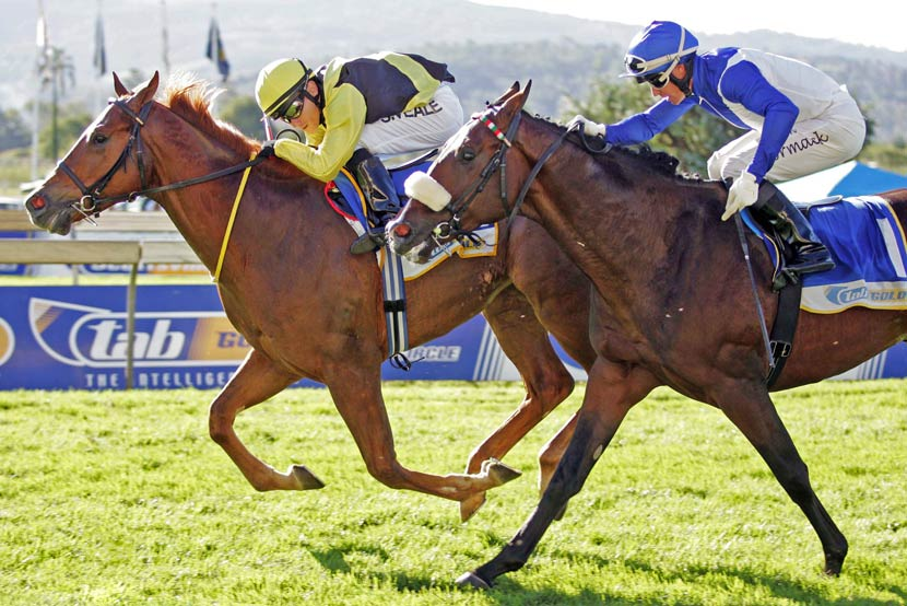 Colour Of Courage - Umkhomazi Stakes
