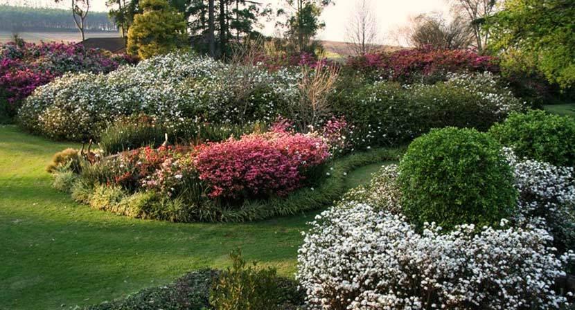 kzn-midlands-spring-garden-1.jpg