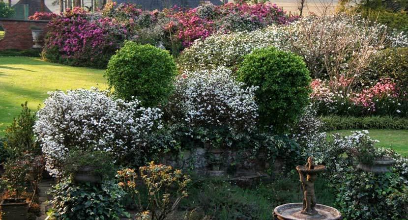 kzn-midlands-spring-garden-2.jpg