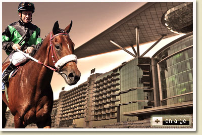 chocolicious at meydan racecourse in dubai by michael nefdt