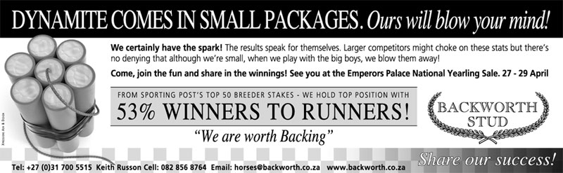 National Yearling Sale 2012 - Dynamite comes in small packages
