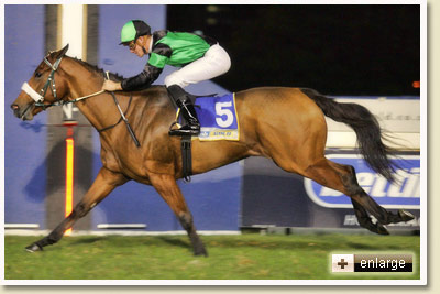 Chocolicious wins at Greyville Racecourse