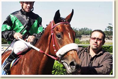 chocolicious racehorse