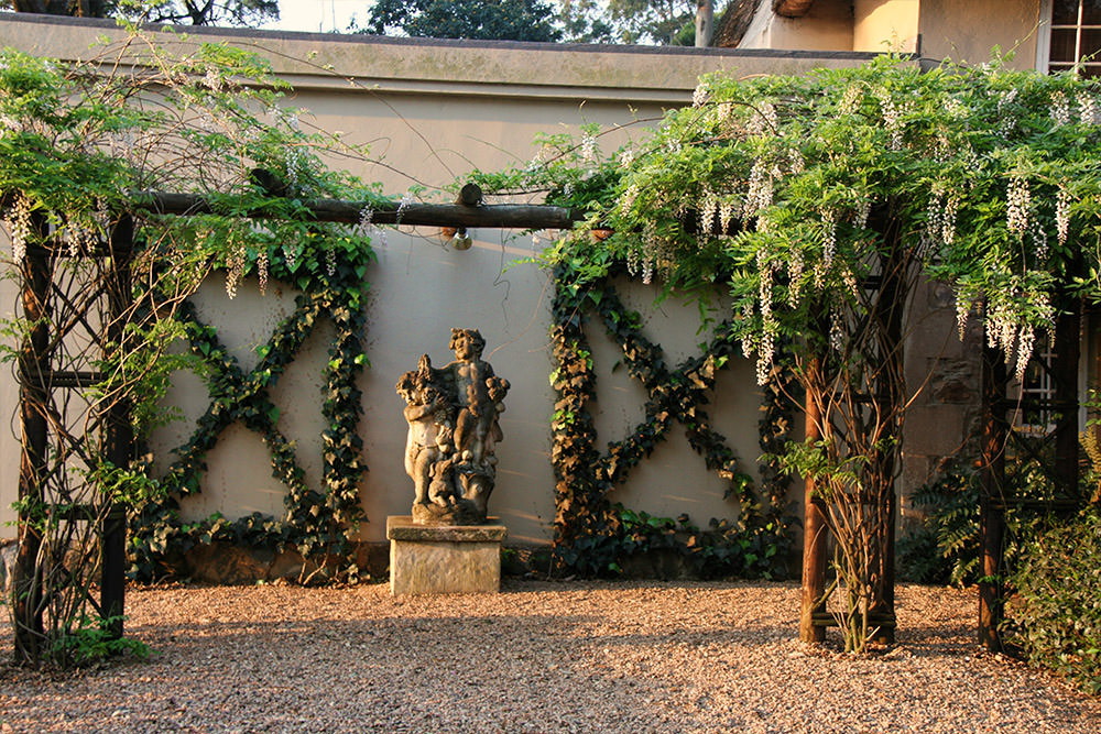 Wisteria Entrance in Spring