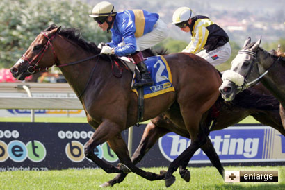 Island Fiesta wins at Scottsville Racecourse