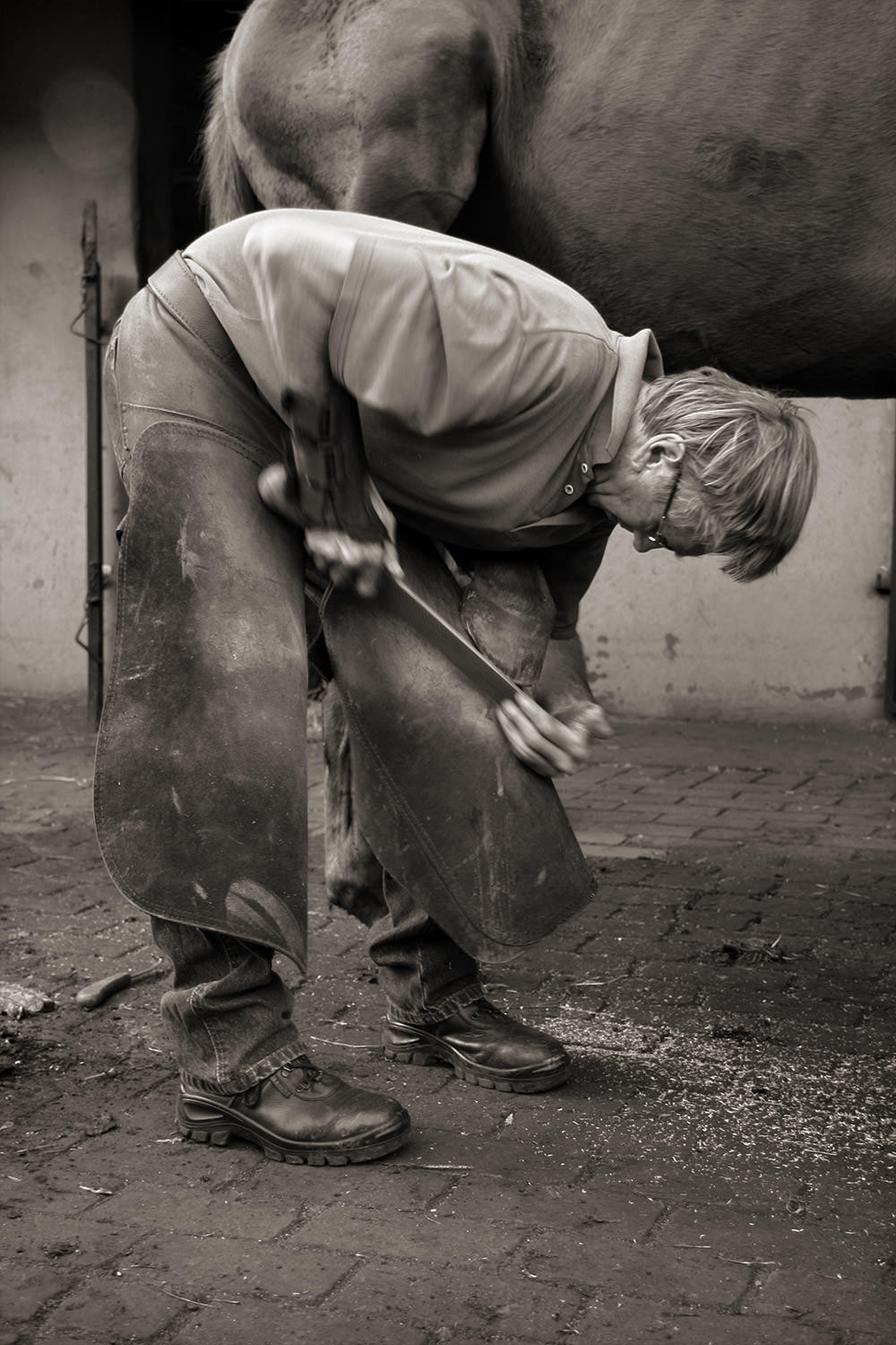 The Farrier at Work 2