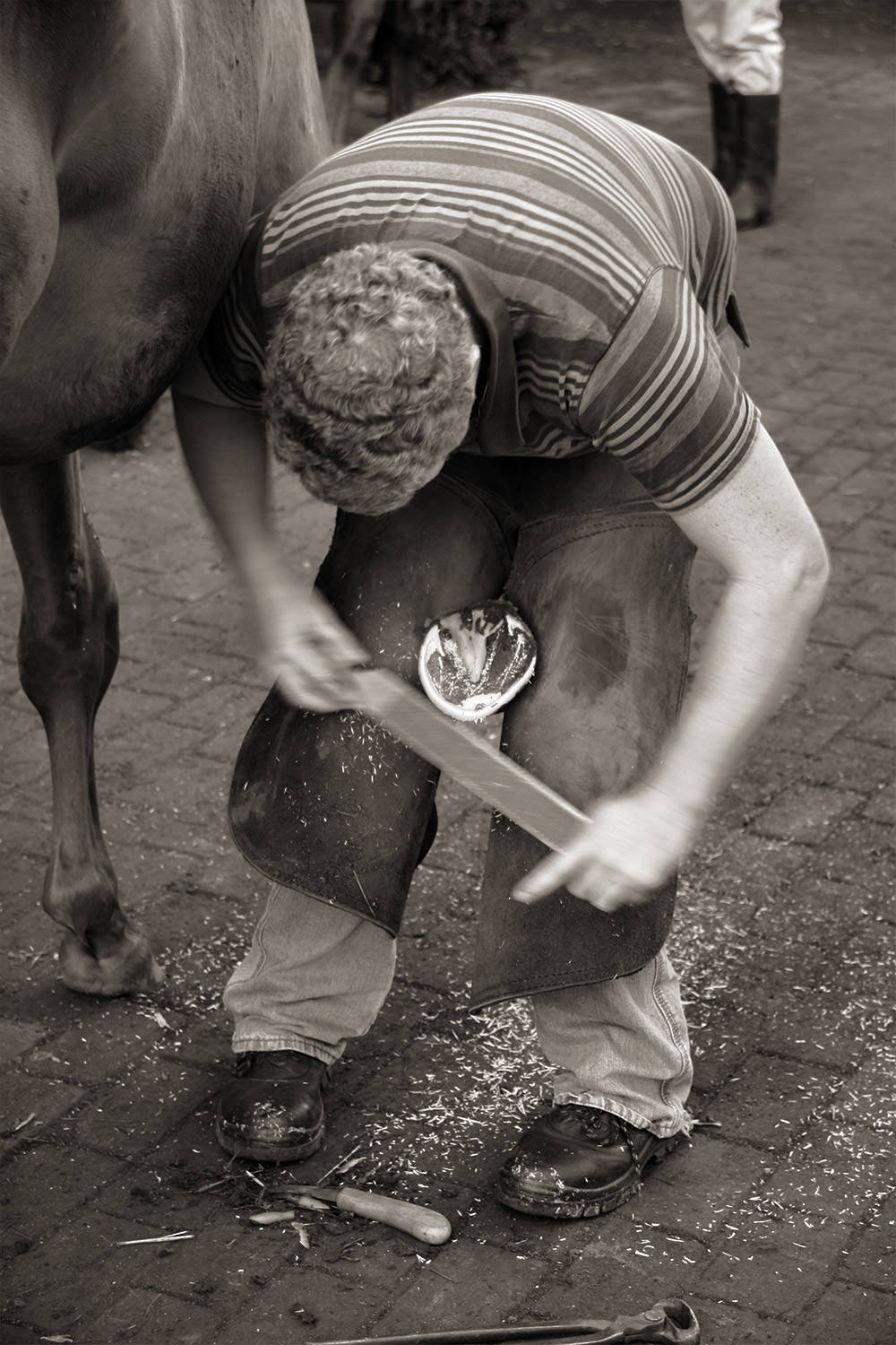 The Farrier at Work 6