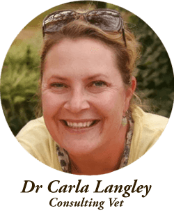 dr-carla-langley.png