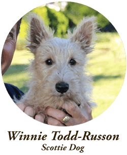 winnie-todd-russon.png