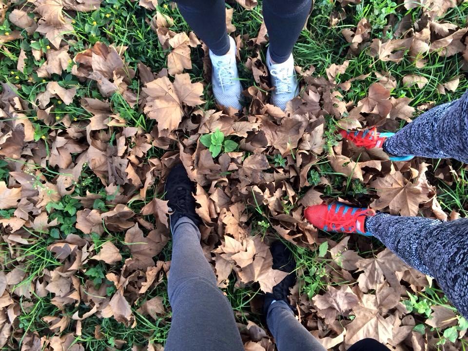 Autumn at Backworth 4