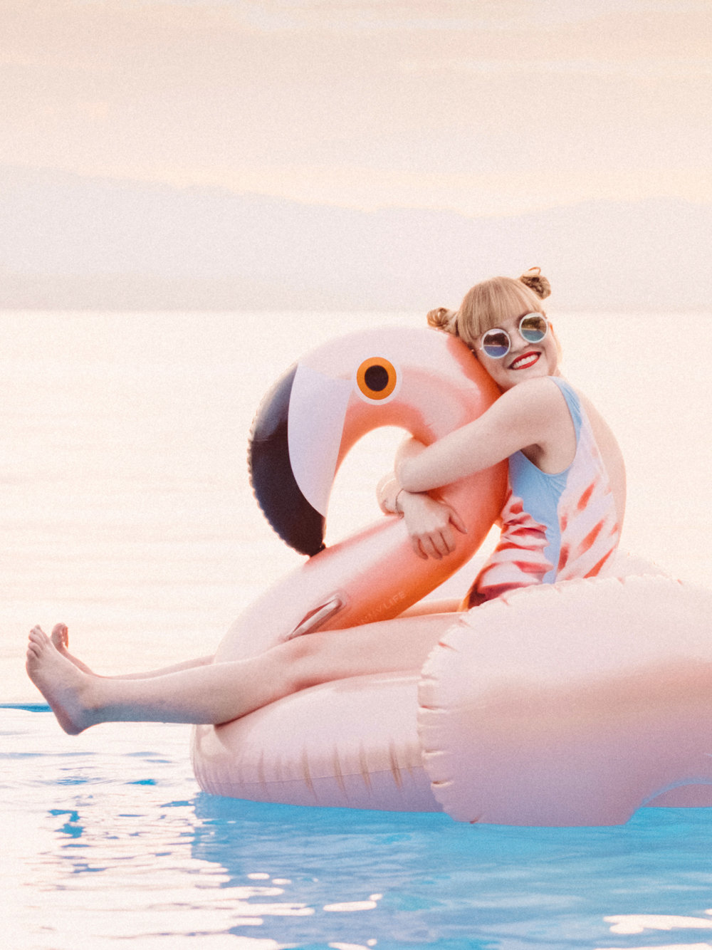 sina-flamingo-005.jpg