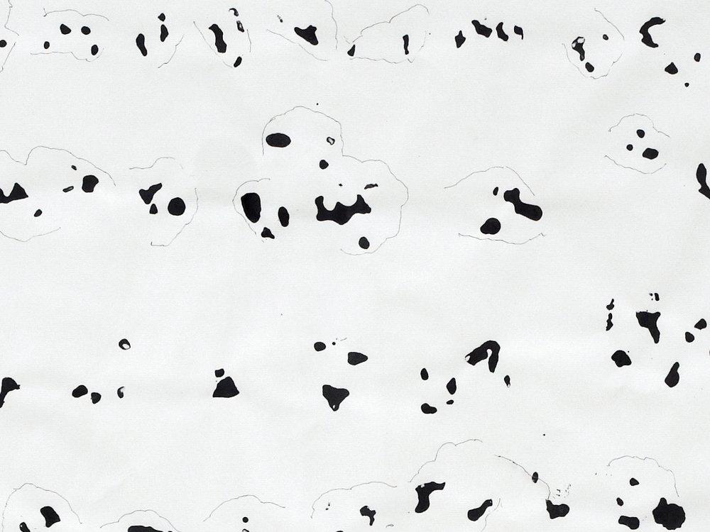Boedi-17012014 15037C.jpg