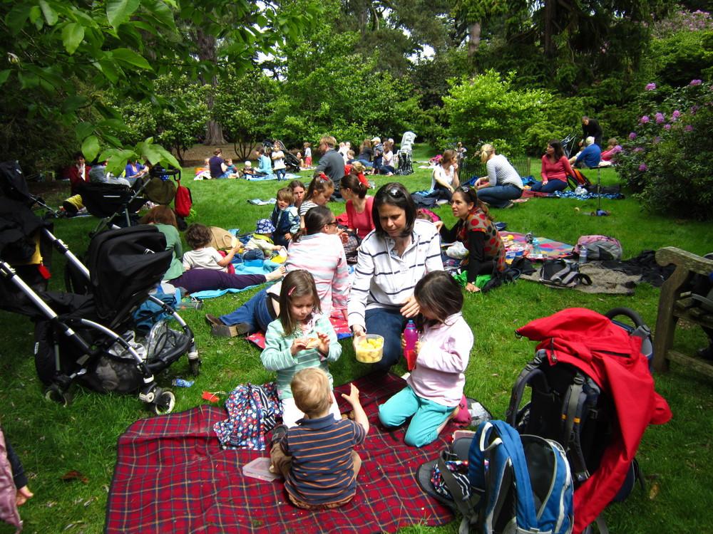 picnic-001.JPG