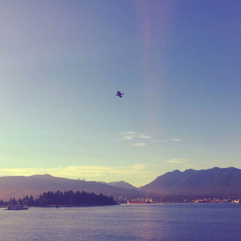 Vancouver. We are having the most amazing summer in the Pacific Northwest!