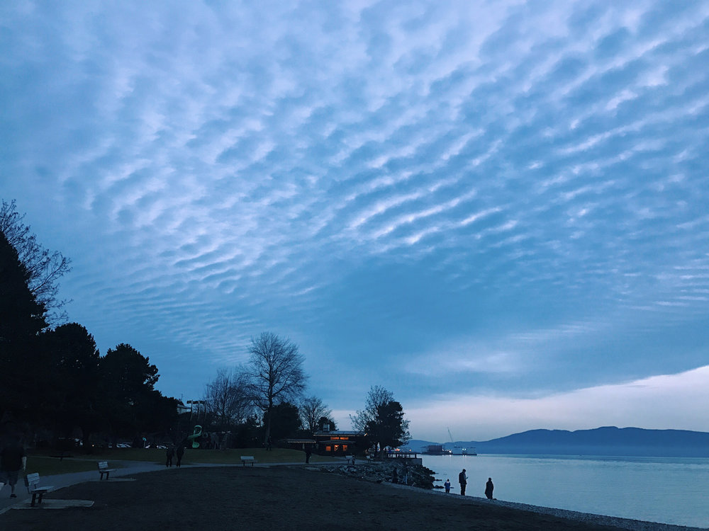 Evening walk in Boulevard Park, Bellingham, WA | kerstinmartin.com