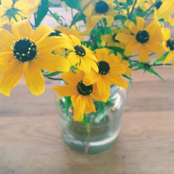 yellow-flowers-2.jpg
