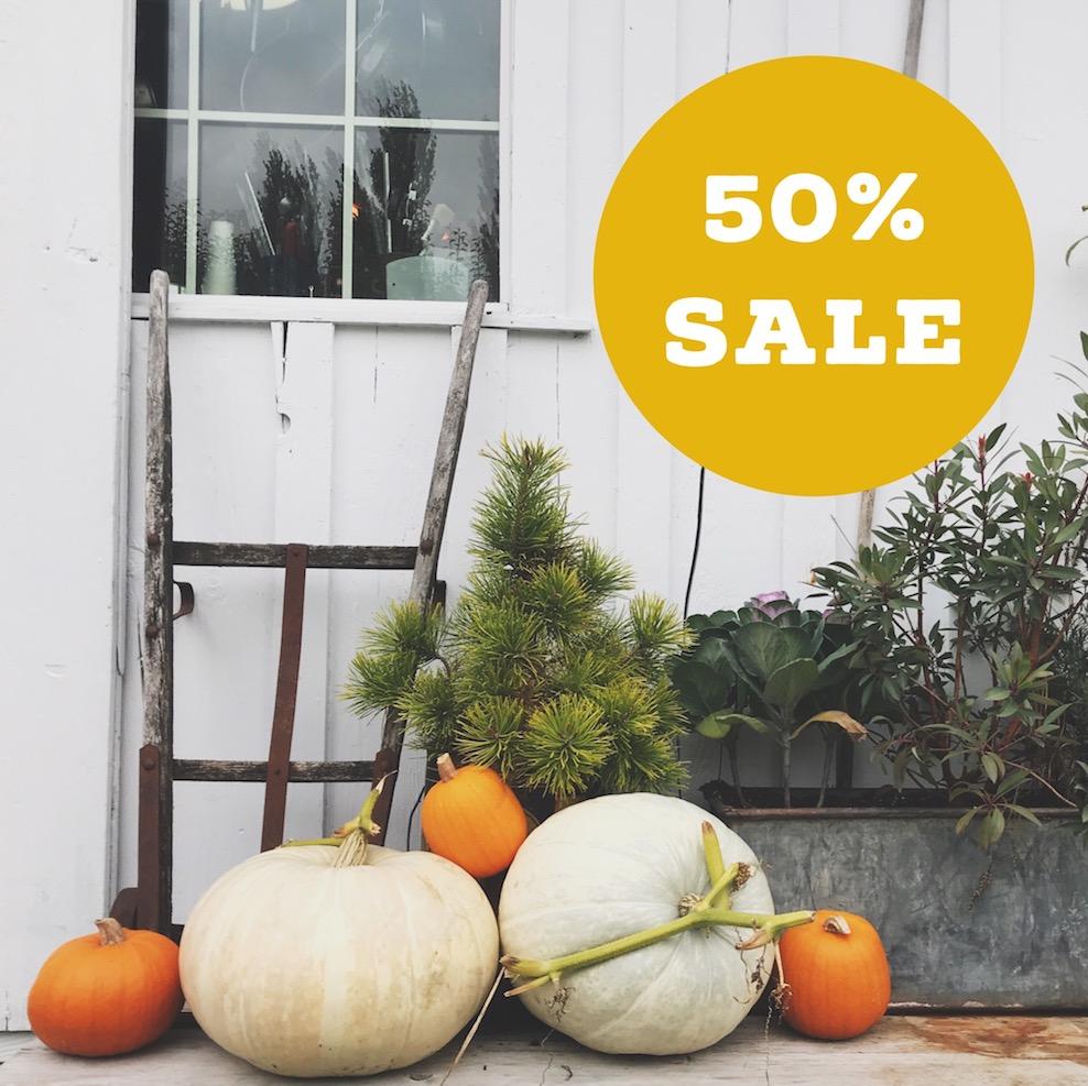 October Sale! 50% of all Squarespace E-Courses | Kerstin Martin Squarespace Studio