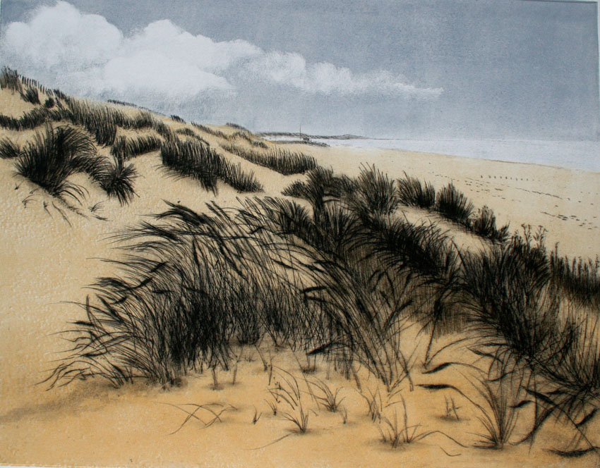 Marram Grass ll (1) 72dpi.jpg