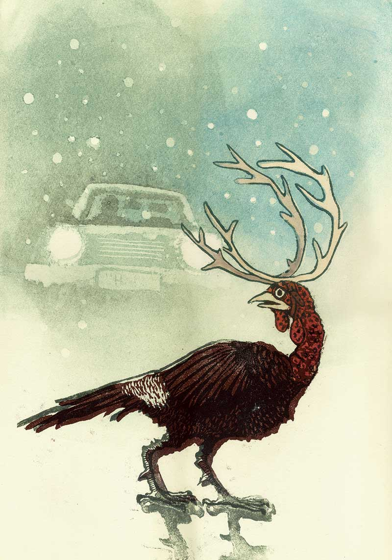 christmas-turkey1.jpg