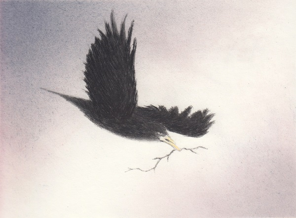 Angela Brookes 'Nesting' drypoint & monoprint
