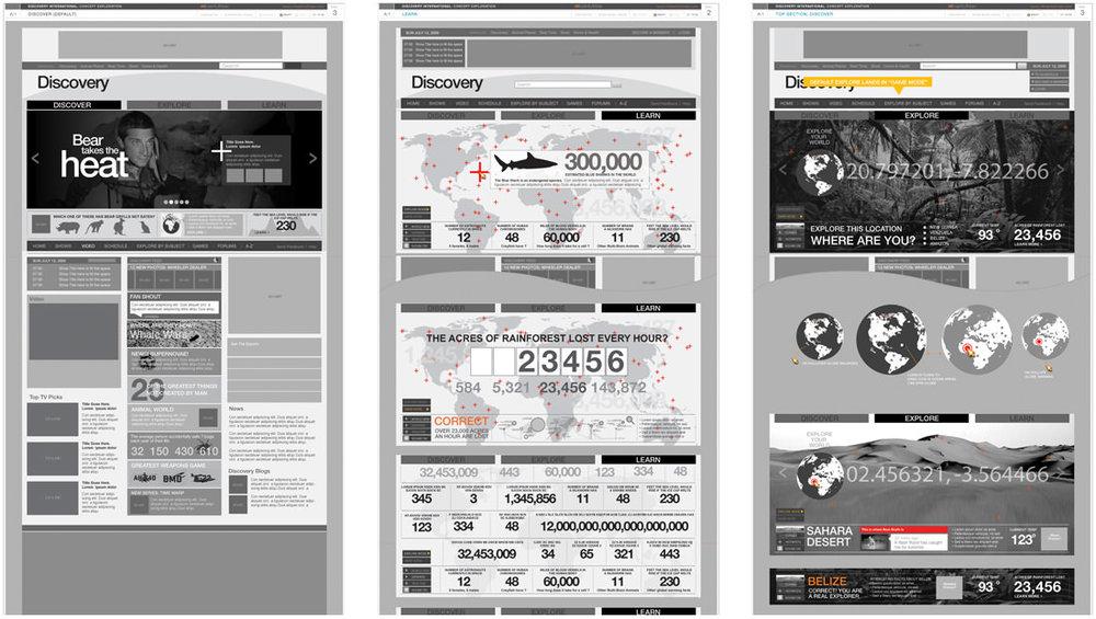 portfolio_discovery_image_1.jpg