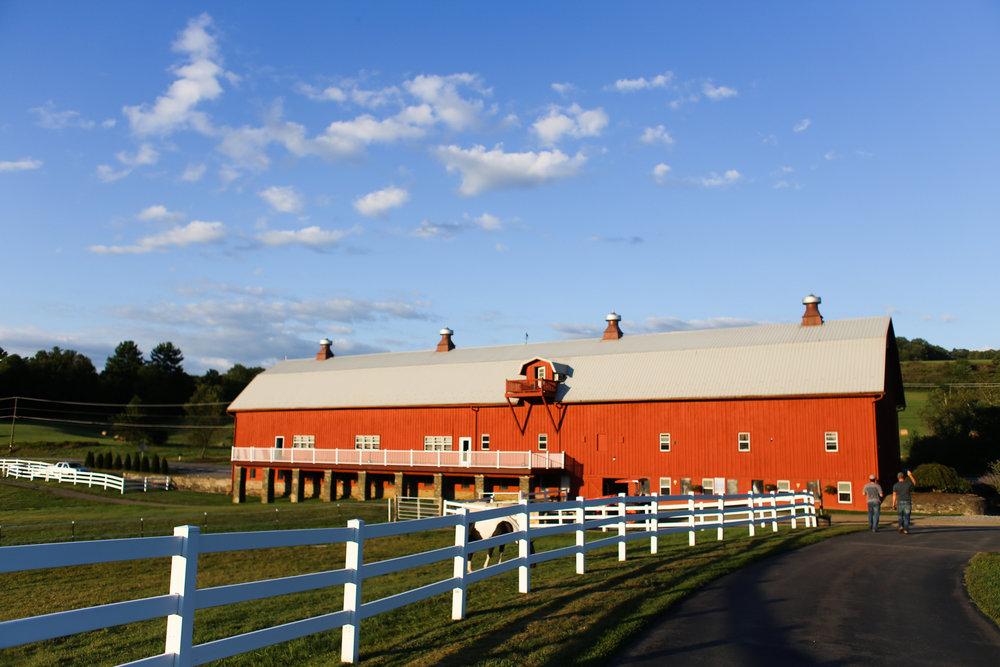 Friedman Farms, Dallas, PA