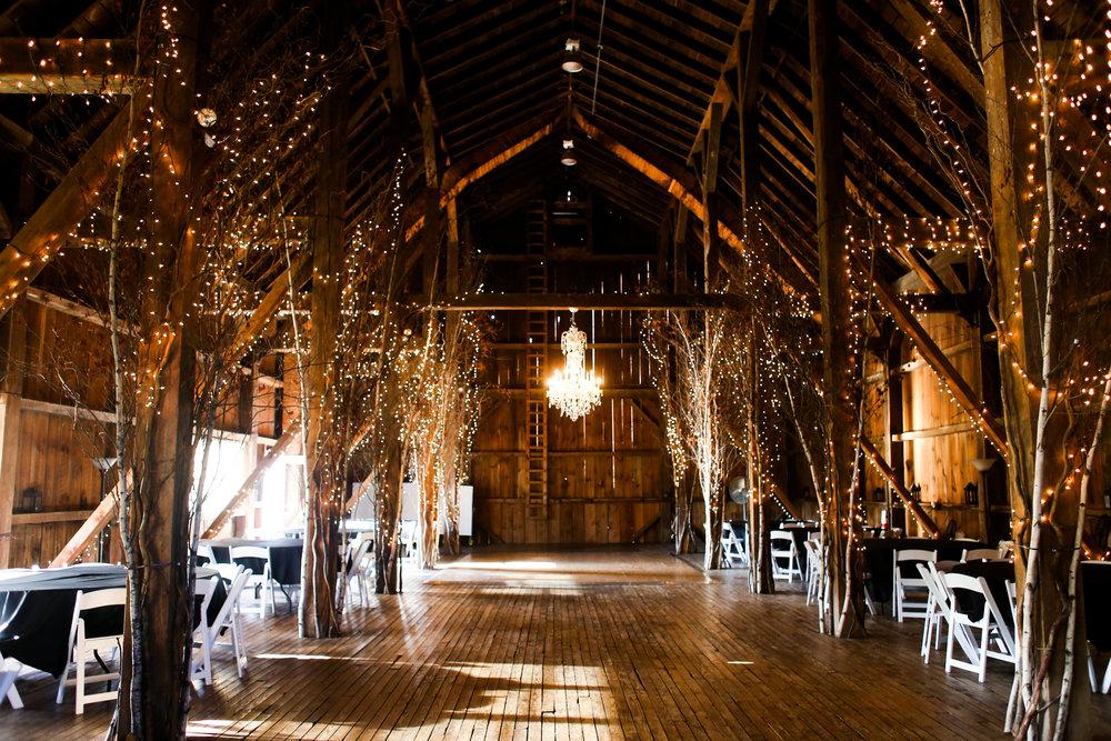 Tribal Wedding Friedman Farm 2015-edited-0169.jpg
