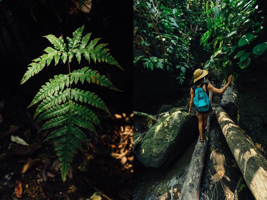 The_Photo_Fram_Costa_Rica_travel_0276.jpg