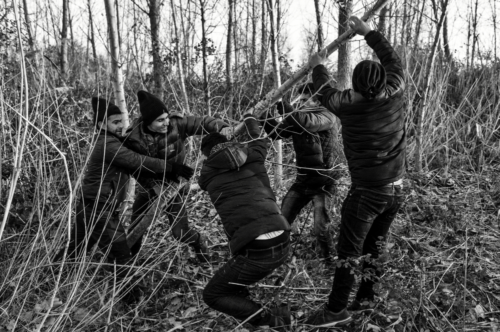 A group of Iraqi men are cutting down a tree to use the wood for making a bonfire. Overwhelmed by the high numbers of people arriving to Greece, authorities can not give proper answer to all the refugee needs. Polykastro, Greece, January 2016.