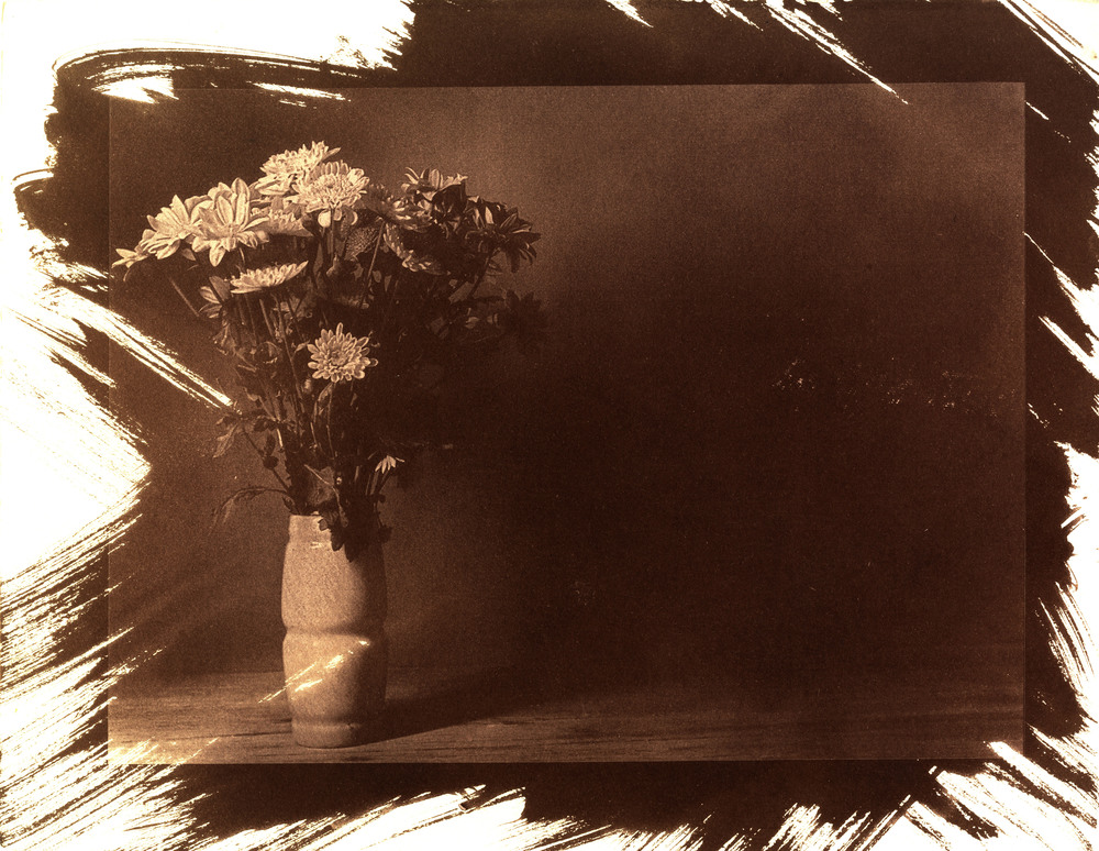 'Cyanotype, 2013'