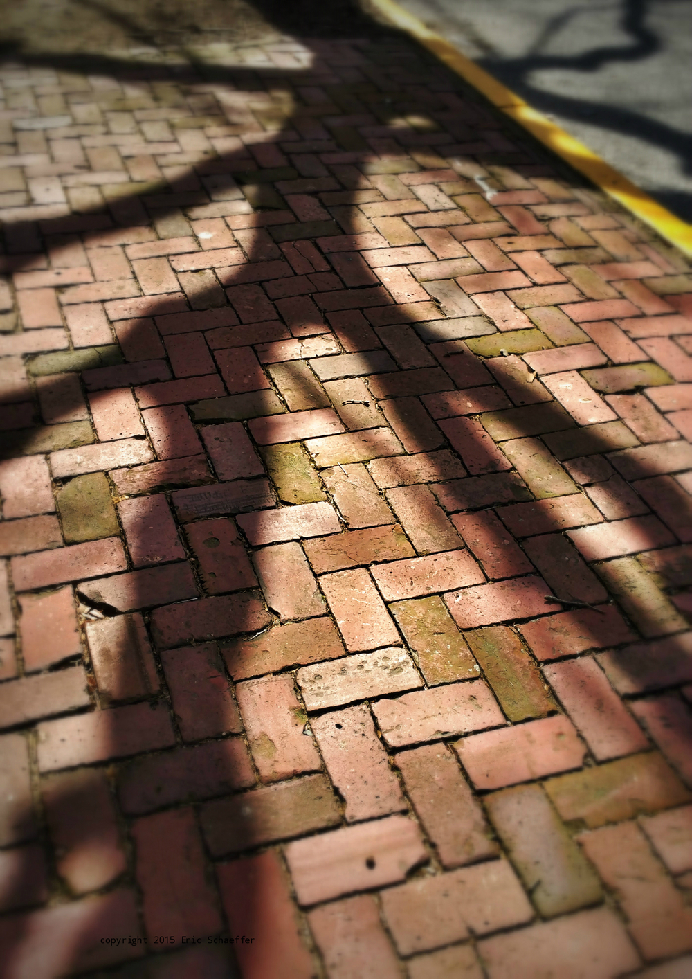brickwalk.jpg