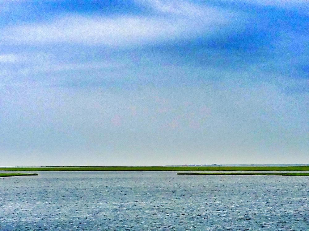 Bay Marsh Sky