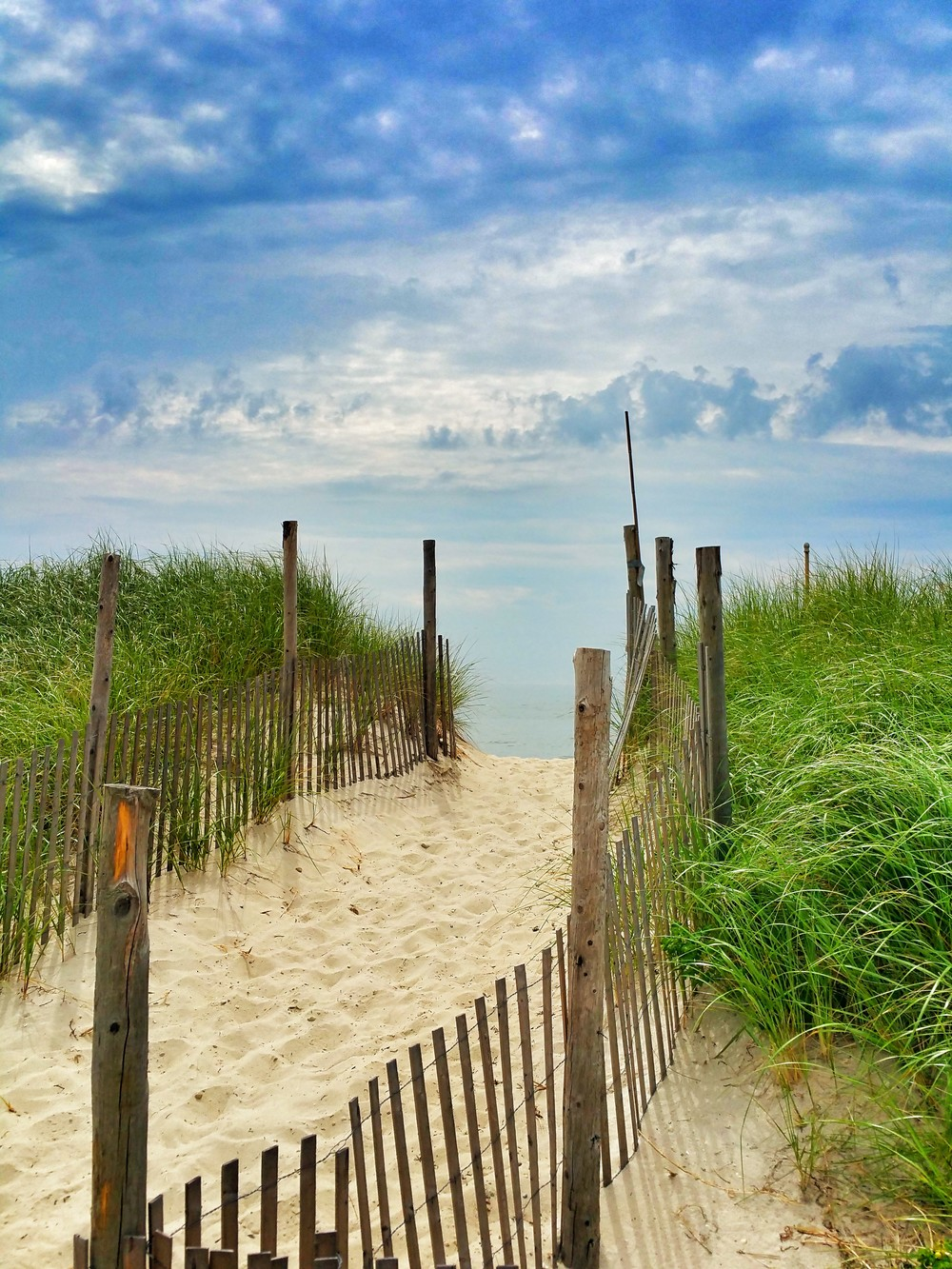 dune-walk.jpg
