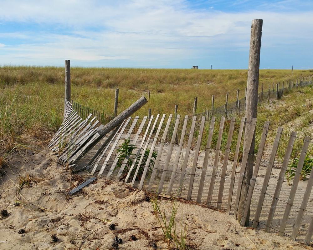fence2e.jpg