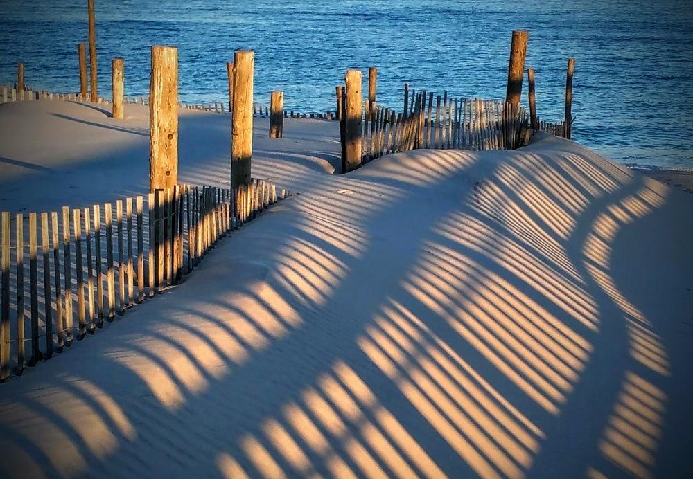 Pearl Shadows