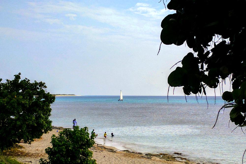 Swim and Sail