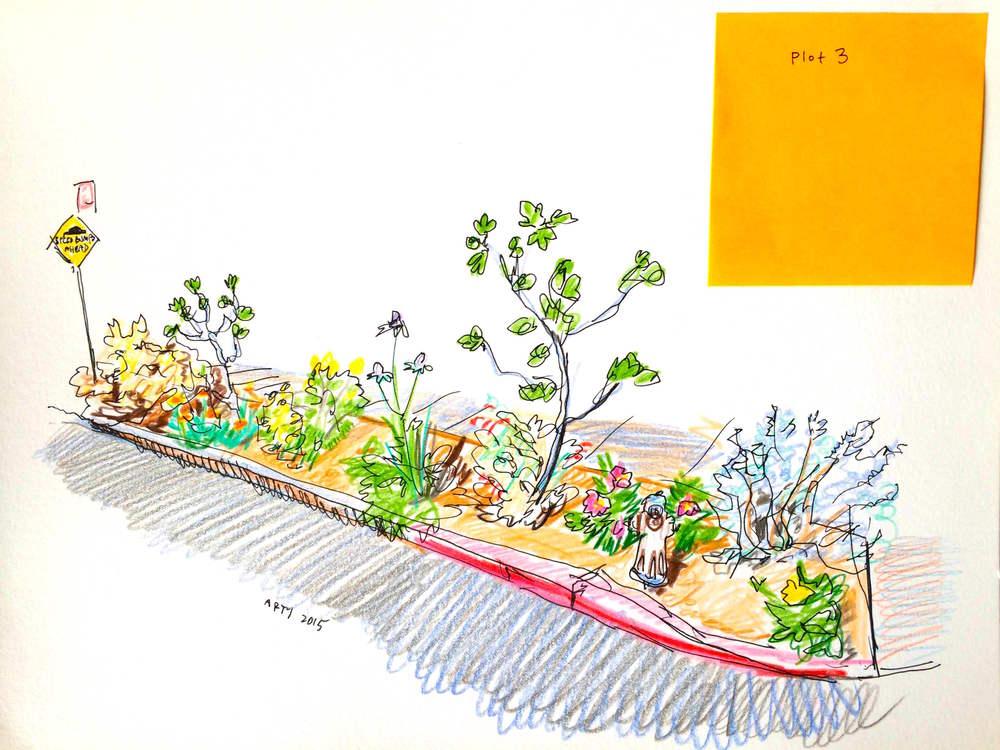 Flower Plot 3.JPG