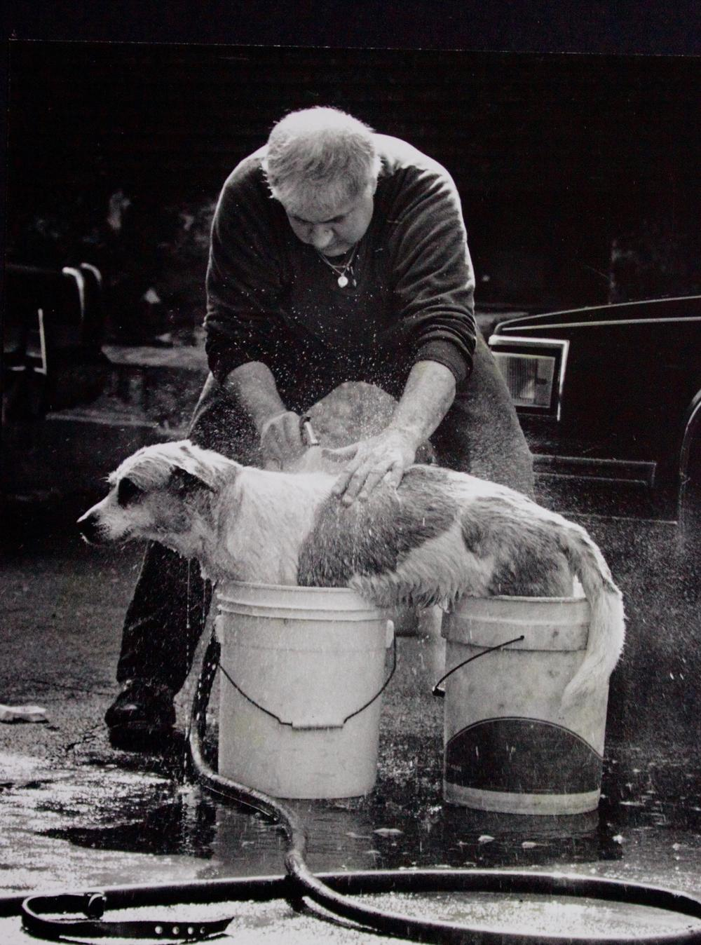 Jersey City dog wash. Photograph by Bill Bayer.
