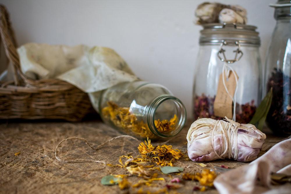 © silkie Lloyd | Botanical Inks Bundle Dyeing Workshop6.jpg