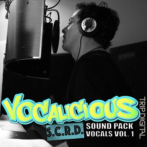 0155-180413-vocalicious-v1.png