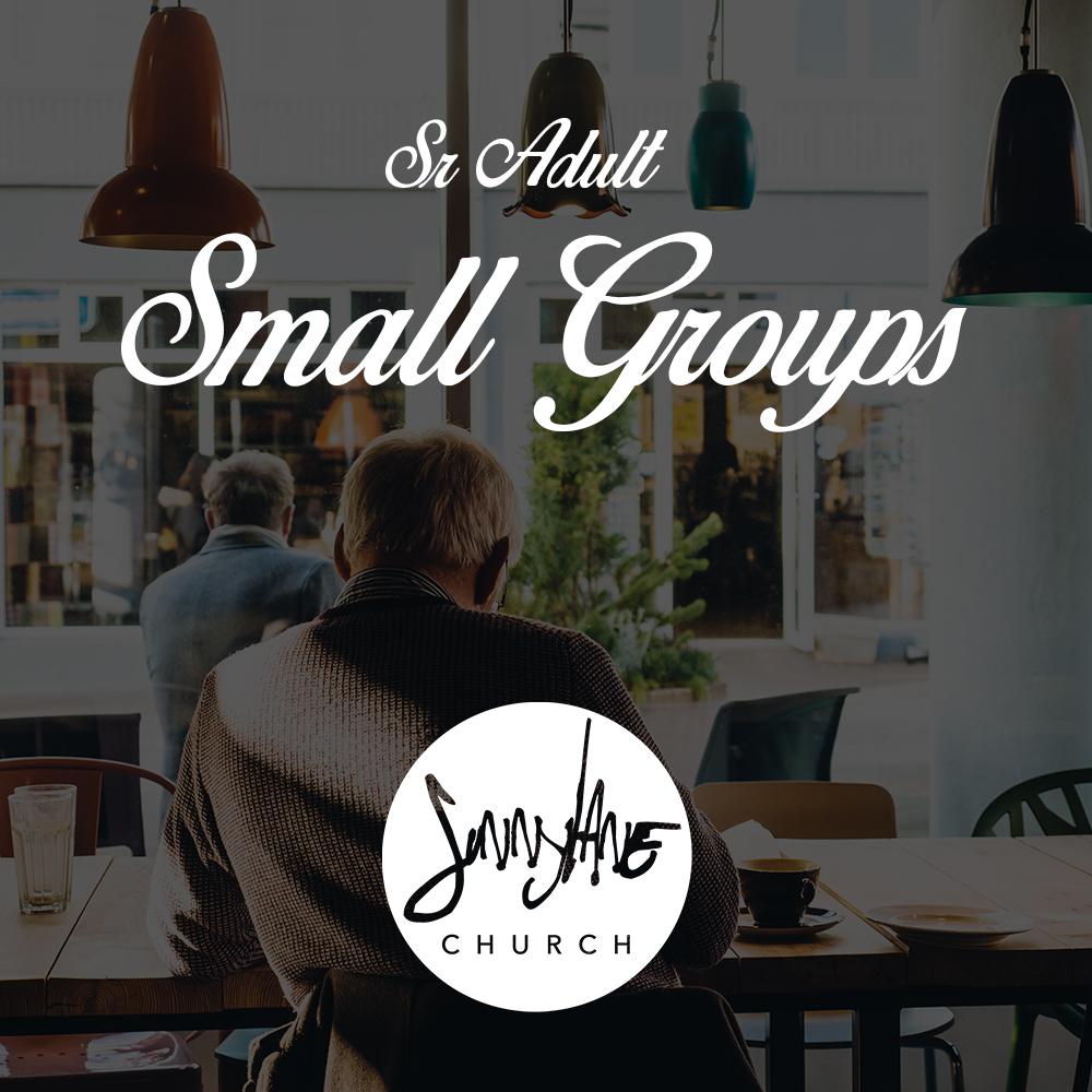 Sr Small Groups.jpg