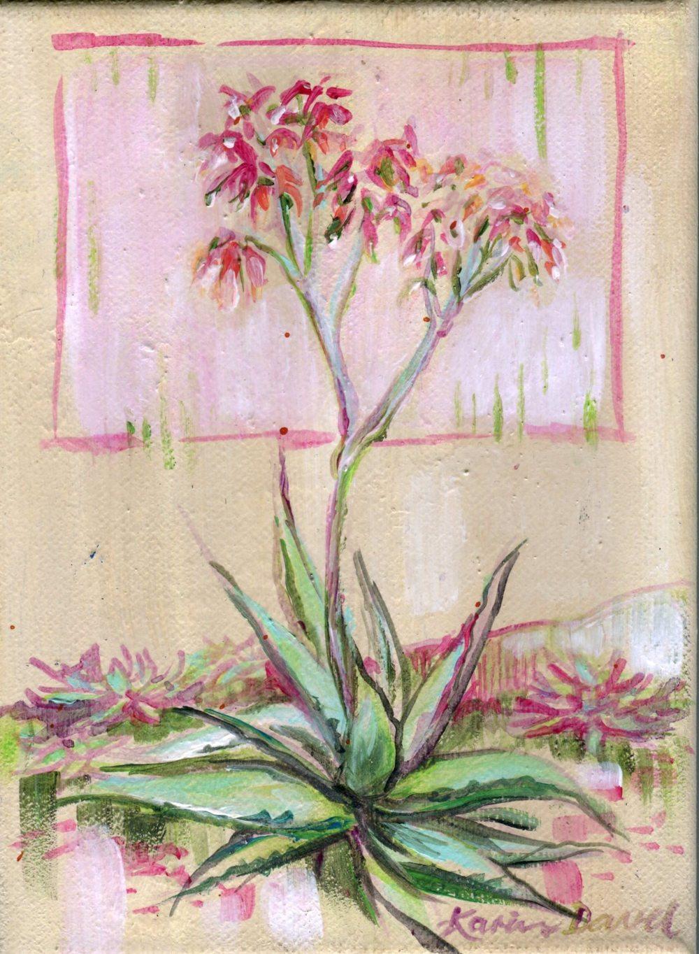 Davel, Karin 78a       Aloe 1, Acrylic on canvas.