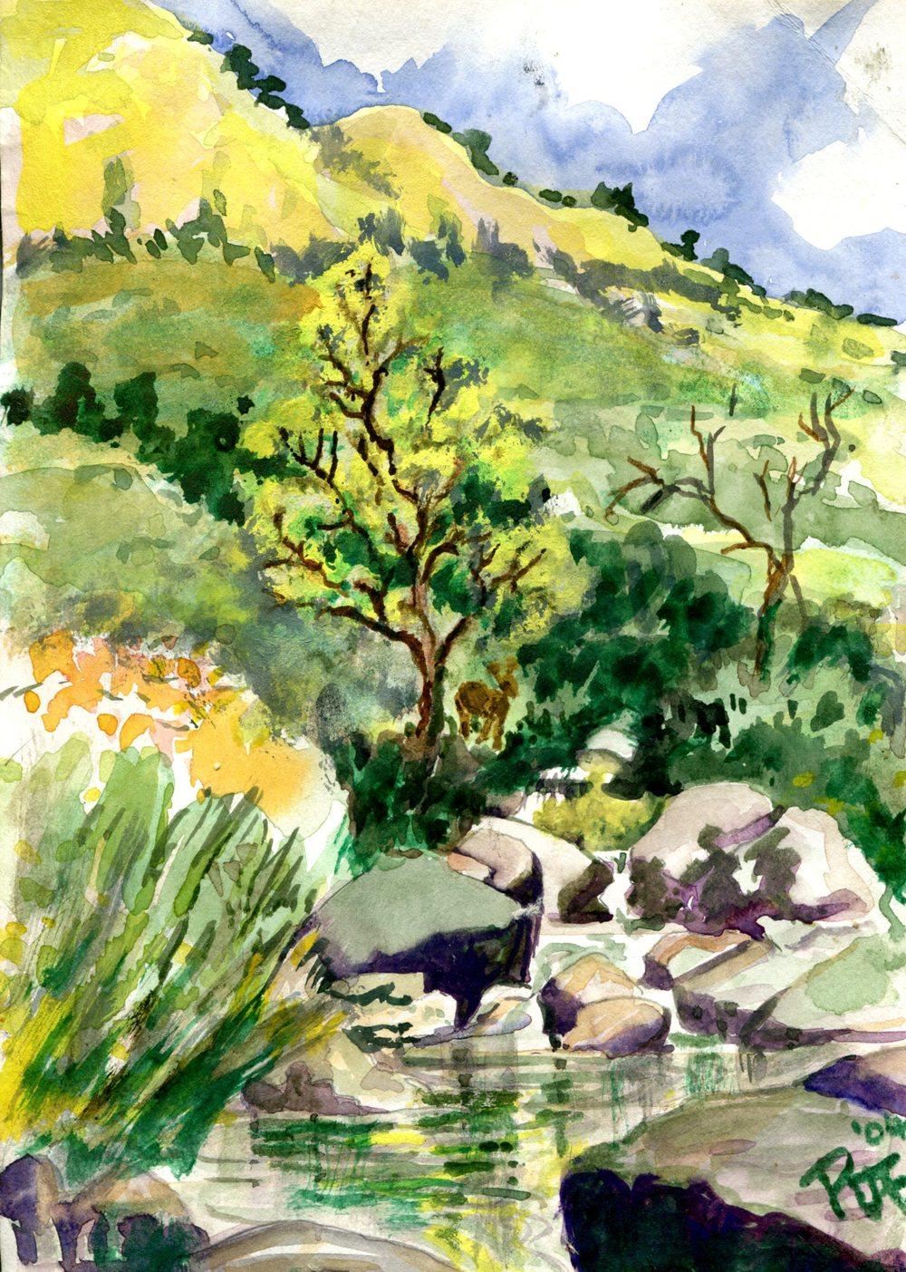 Fairlamb, Ruth  40a  Mountain Stream, Water-colour.