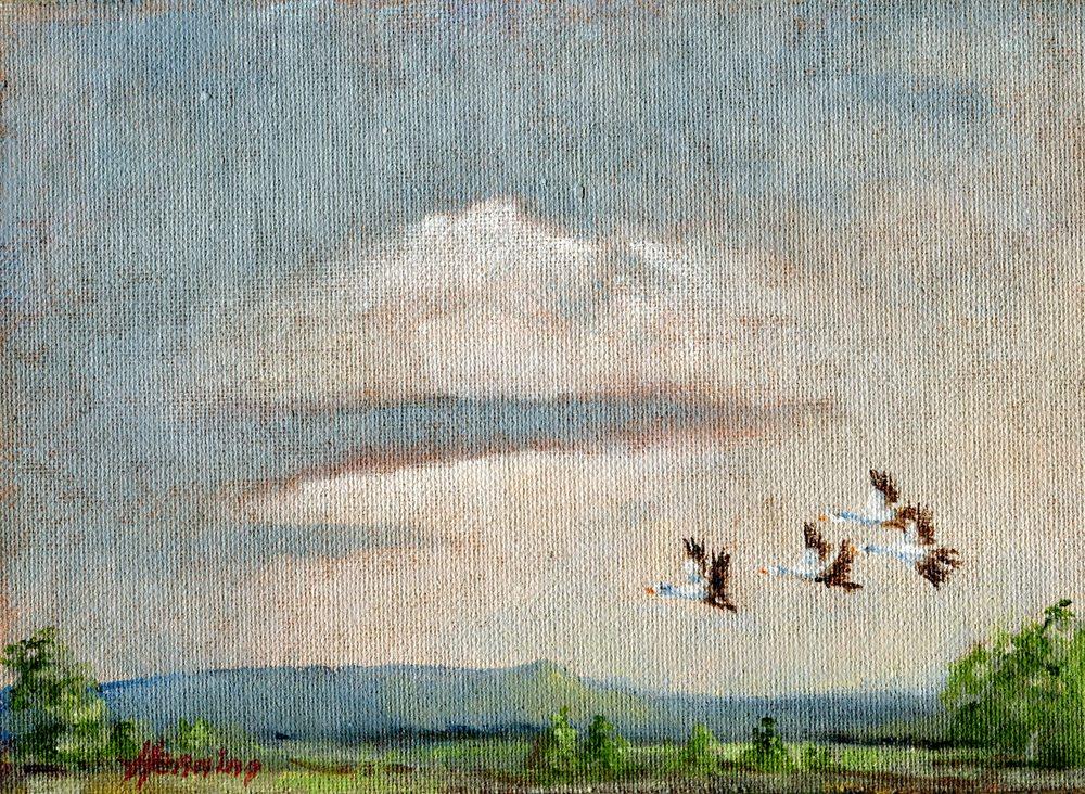 Henning,    Dennis 46a Blue Cranes, Dargle, Oil on canvas board.