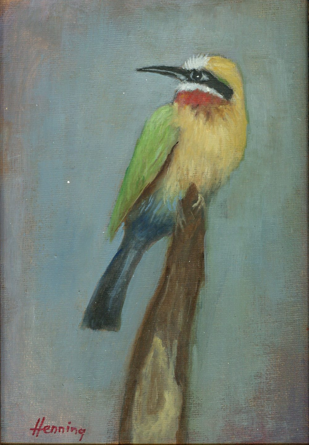 Henning, Dennis    46b Bee Eater, Oil on canvas board.